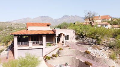 Tucson Single Family Home For Sale: 4251 N Summer Set Drive