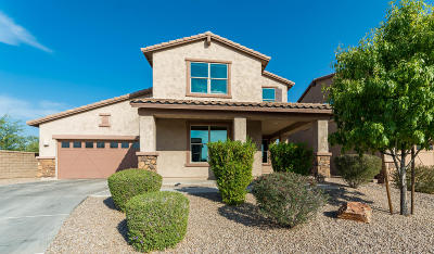 Oro Valley Single Family Home For Sale: 2298 W Tangor Place