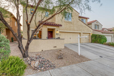 Tucson Single Family Home For Sale: 5872 S Copper Hills Drive