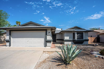 Tucson Single Family Home For Sale: 8480 N Snowdrop Drive