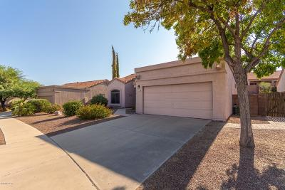 Tucson Single Family Home For Sale: 1121 S Paperflower Avenue