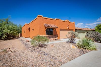 Tucson Single Family Home For Sale: 2436 W Silver Vista Place