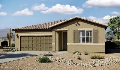 Tucson Single Family Home For Sale: 4461 W Kaylah Drive