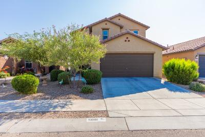 Tucson Single Family Home For Sale: 5081 S River Run Drive