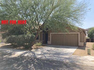 Sahuarita Single Family Home For Sale: 946 E Ashburn Mountain Drive