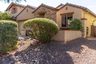 Oro Valley Single Family Home For Sale: 1283 W Vinovo Pass