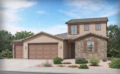 Marana Single Family Home For Sale: 12070 N Goldenview Lane
