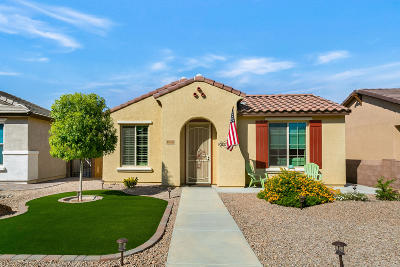 Vail Single Family Home Active Contingent: 10059 S Telega Drive