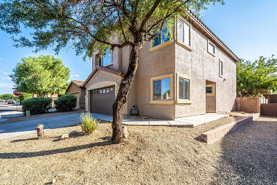 Sahuarita Single Family Home Active Contingent: 1042 E Mount Shibell Drive