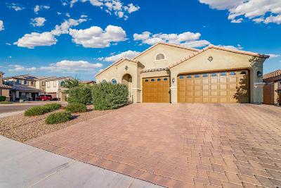 Tucson Single Family Home For Sale: 8534 N Gaetano Loop