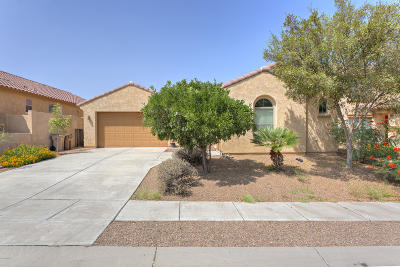 Sahuarita Single Family Home For Sale: 734 W Camino Curvitas