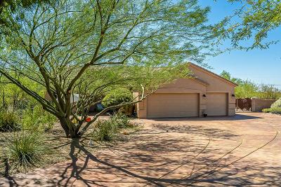 Vail Single Family Home Active Contingent: 13944 S Broken Spoke Lane