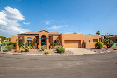 Tucson Townhouse For Sale: 4580 E Red Mesa Drive