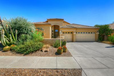 Marana Single Family Home Active Contingent: 12876 N Bass Canyon Drive