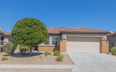Vail Single Family Home Active Contingent: 13797 E Carruthers Street