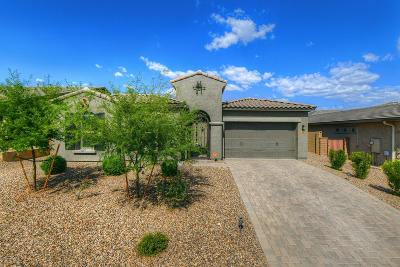 Tucson Single Family Home Active Contingent: 846 W Chrysanthia Court