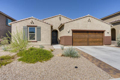 Oro Valley Single Family Home Active Contingent: 11125 N Hydrus Avenue
