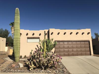 Tucson Single Family Home For Sale: 9370 N Jessy Lane