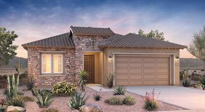 Tucson Single Family Home For Sale: 714 E Barun Valley Place E