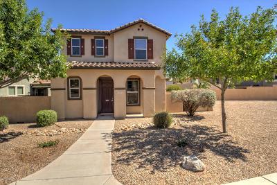 Sahuarita Single Family Home For Sale: 739 W Paseo Celestial