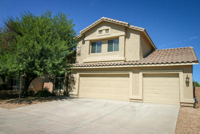 Tucson Single Family Home For Sale: 3715 E Fjord Pony Road