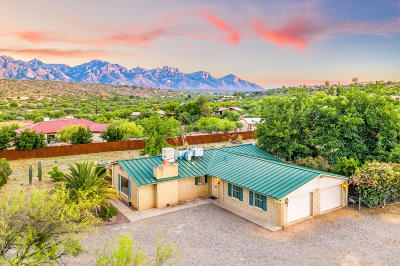 Tucson Single Family Home For Sale: 15851 N Lago Del Oro Parkway