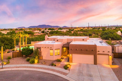 Tucson Single Family Home For Sale: 7905 W Little Eagle Court