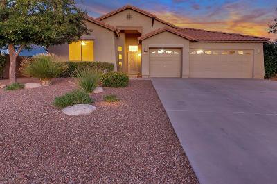 Tucson Single Family Home For Sale: 15198 N Rugged Lark Drive