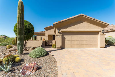 Marana Single Family Home Active Contingent: 12287 N Golden Mirror Drive