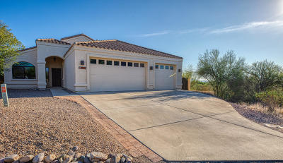 Tucson Single Family Home For Sale: 1918 W Placita Rancho Naranjo