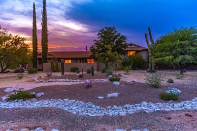 Tucson Single Family Home For Sale: 6931 N Paloma Drive