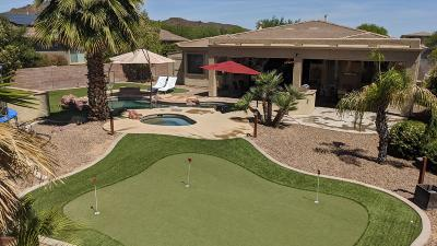Tucson Single Family Home For Sale: 8445 N Ironwood Reserve Way