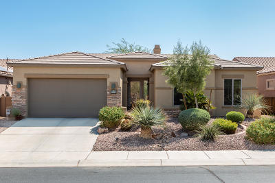 Tucson Single Family Home For Sale: 8460 N Moonfire Drive