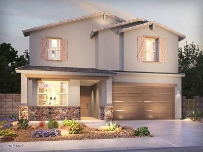 Marana Single Family Home For Sale: 10720 W Chestnut Street