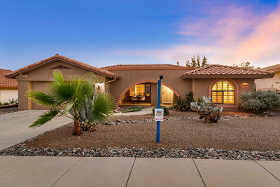 Oro Valley Single Family Home For Sale: 14541 N Line Post Lane