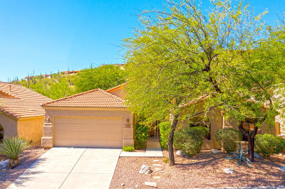 Tucson Single Family Home Active Contingent: 4209 N Ocotillo Canyon Drive