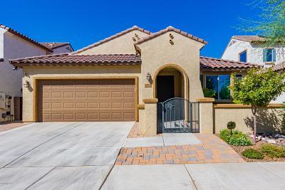 Tucson Single Family Home For Sale: 10911 E Roscommon Street