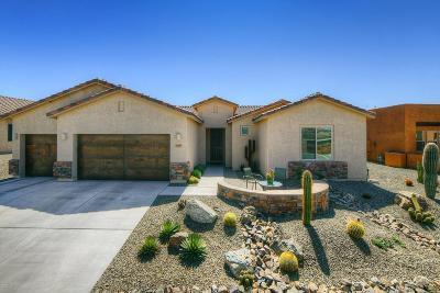 Marana Single Family Home For Sale: 12644 N Fallen Shadows Drive