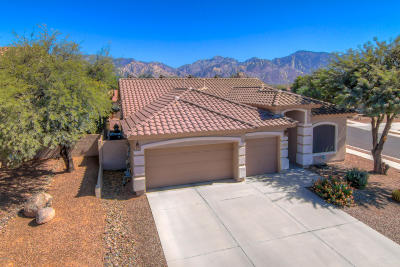 Oro Valley Single Family Home For Sale: 2488 E Big View Drive