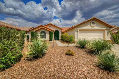 Tucson Single Family Home For Sale: 37587 S Mountain Sage Drive