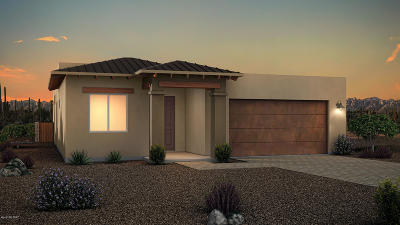 Tucson Single Family Home Active Contingent: 6310 N Alani Blossom Court