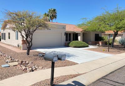 Oro Valley Single Family Home For Sale: 14341 N Sky Trail