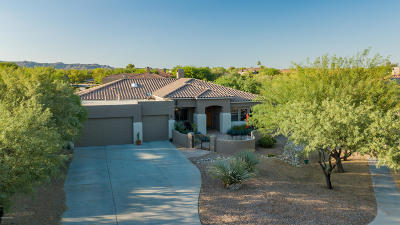 Oro Valley Single Family Home For Sale: 1298 W Ziziphus Place