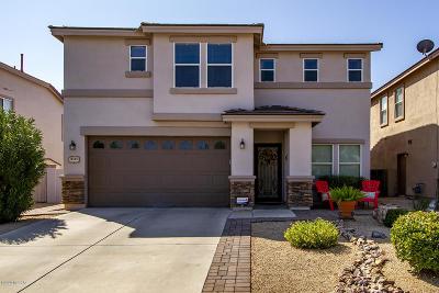 Sahuarita Single Family Home Active Contingent: 14555 S Sumac Drive