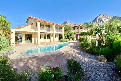 Oro Valley Single Family Home Active Contingent: 10175 N Calle Del Carnero