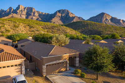 Oro Valley Single Family Home For Sale: 2296 E Stone Stable Drive