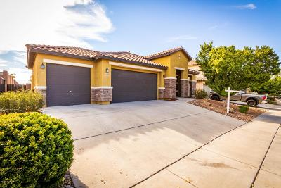 Vail Single Family Home For Sale: 17172 S Painted Vistas Way