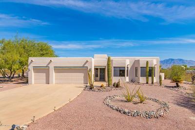 Tucson Single Family Home Active Contingent: 4860 N Desert Tortoise Place