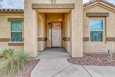 Marana Single Family Home Active Contingent: 8941 W Airdale Road