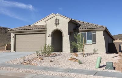 Tucson Single Family Home For Sale: 8461 N Van Cleeve Lane N